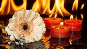 nashville tn funeral home and cremations